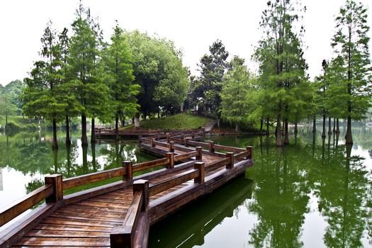Chinese pond bridge