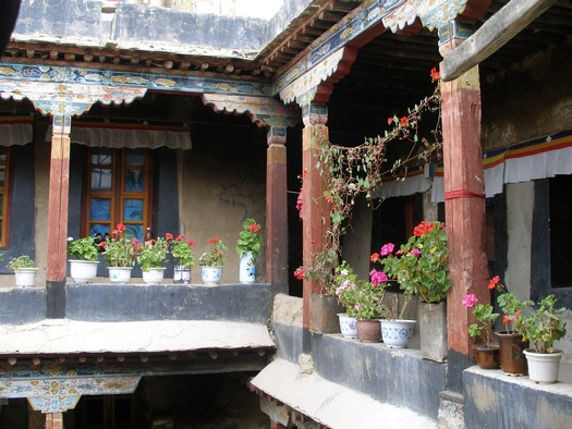 Potted flowers on Tibetan balcony