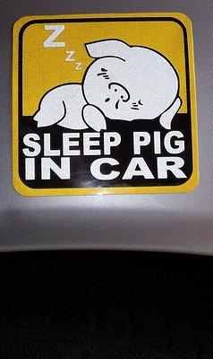 Sleep pig in car decal