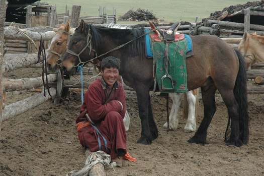 Man with Mongolian clothes and horses