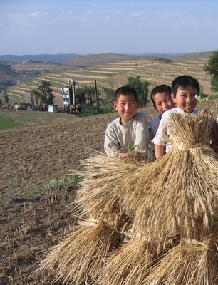 Ningxia boys in field