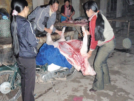 Fresh pig meat in Vietnam market