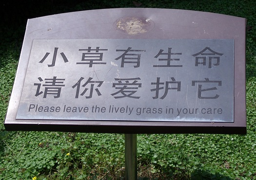 Please leave the lively grass in your care