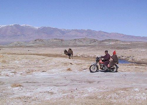 Camel and other transportation in Gobi Desert