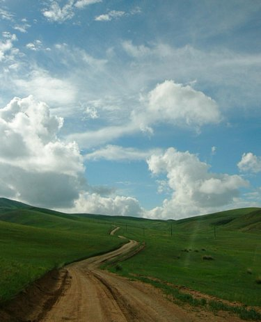 Hustai National Park, Mongolia