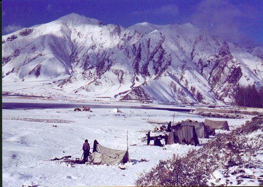 Tibetan nomad tents