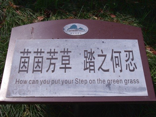 How can you put your step on the green grass?