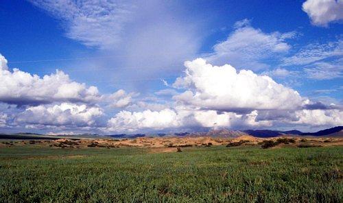 Mongolian grassland at Hustai