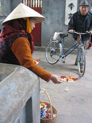 Vietnam street peddler